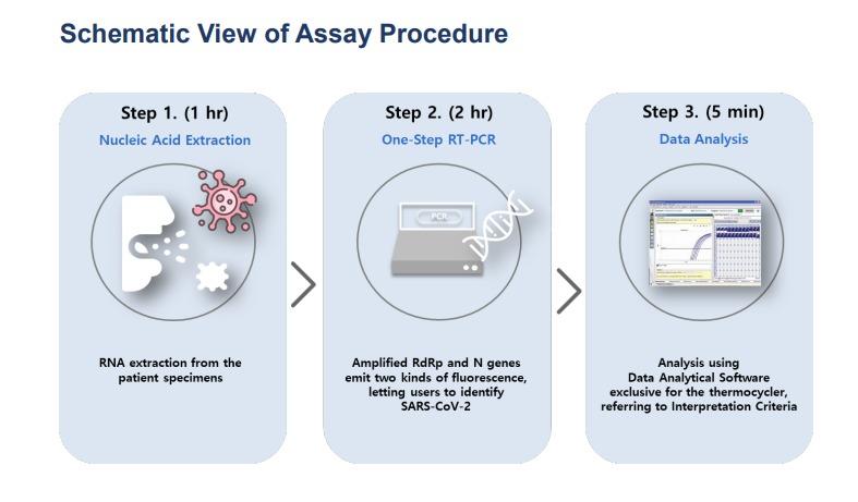 schematic_assay_procedure